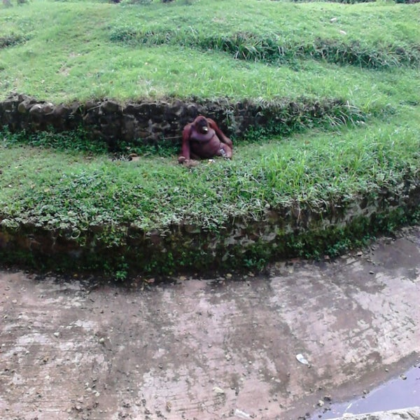Photo taken at Kebun Binatang Ragunan by Mita A. on 4/28/2013
