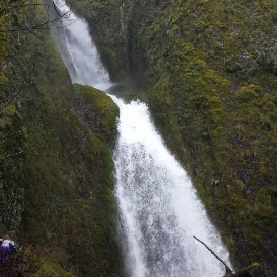 Photo taken at Wahclella Falls Trailhead by Lawrence S. on 3/9/2014