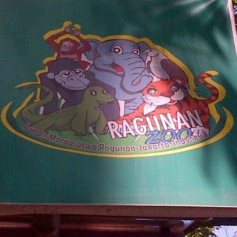 Photo taken at Kebun Binatang Ragunan by Rachma K. on 8/19/2013