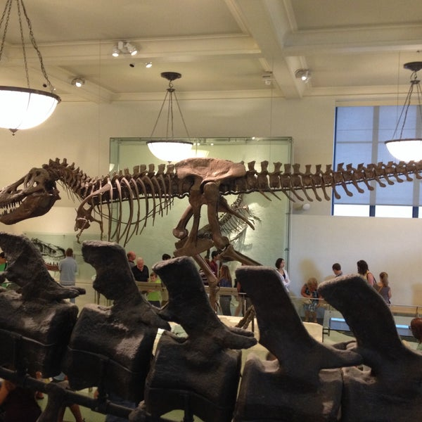 Photo taken at David H. Koch Dinosaur Wing by Dave M. on 7/25/2015