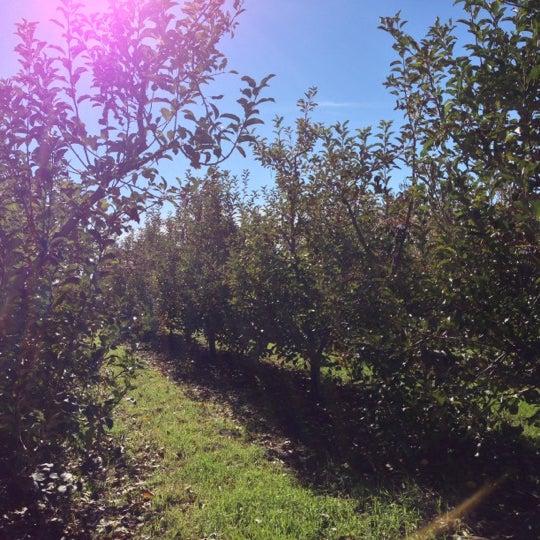 Photo taken at Boa Vista Orchards by Matt M. on 11/23/2012