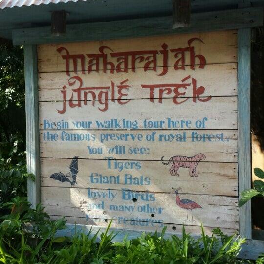Photo taken at Maharajah Jungle Trek by Elisa d. on 10/29/2015