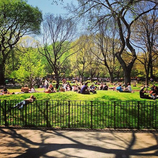 Tompkins Square Dog Park Nyc