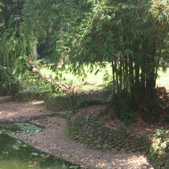 Photo taken at Kebun Binatang Ragunan by Bayu S. on 8/1/2014