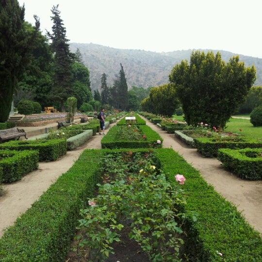Jard n bot nico nacional camino el olivar 305 for Jardin botanico nacional