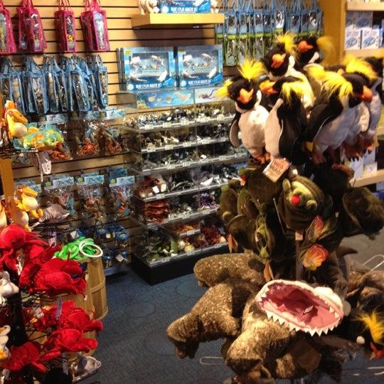 Photos at aquarium gift shop waterfront boston ma for Fish store austin
