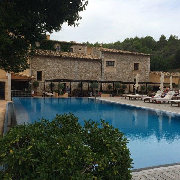 Best Restaurants In Pollensa: Mallorca