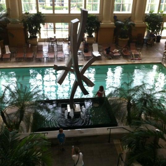 The Pool At Borgata Pool