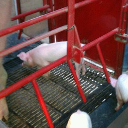 Photo taken at Swine Barn by Jon C. on 9/2/2011
