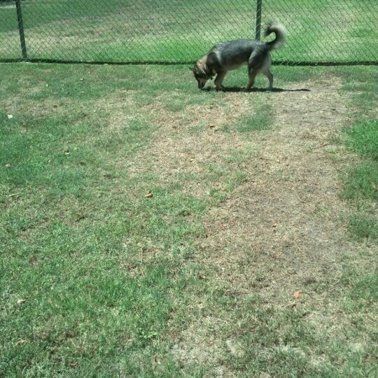 Photo taken at Laguna Canyon Dog Park by Steve C. on 9/2/2012