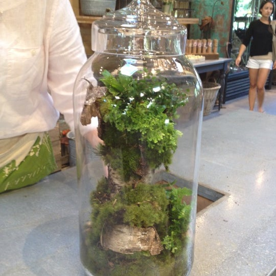 Get a unique custom terrarium.  Ask for  Deborah