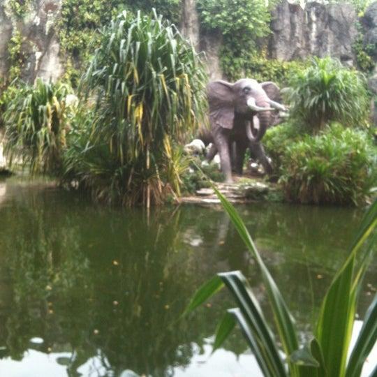 Photo taken at Kebun Binatang Ragunan by Azura R. on 6/5/2012