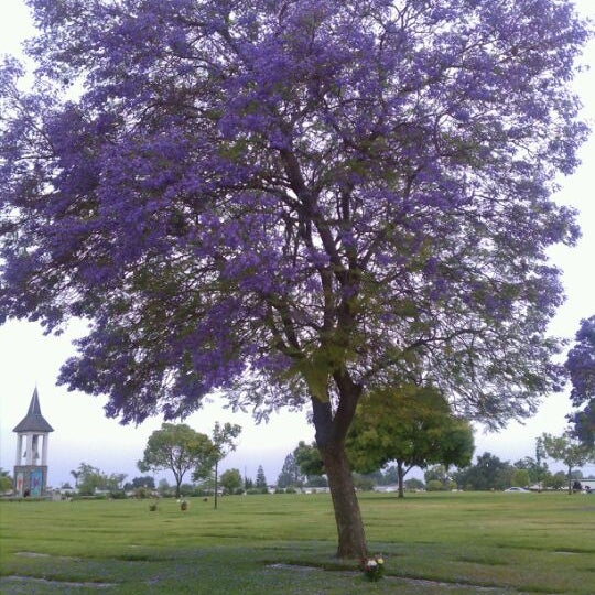 Photo taken at Oakdale Memorial Park and Mortuary by Chris N. on 6/11/2011