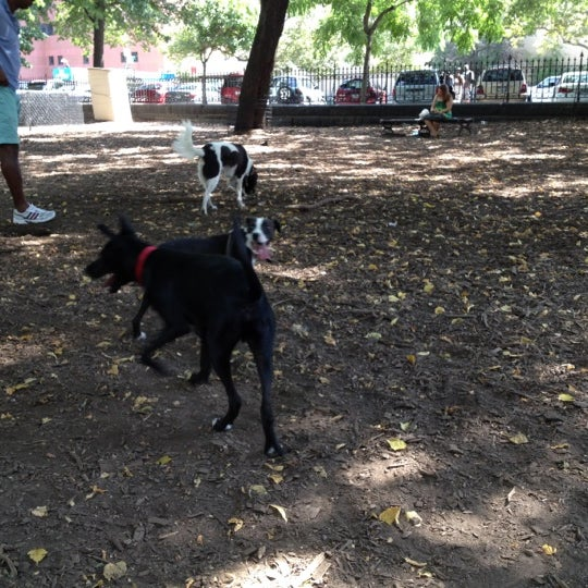 Photo taken at Marcus Garvey Park - Dog Run by Lily on 8/26/2012