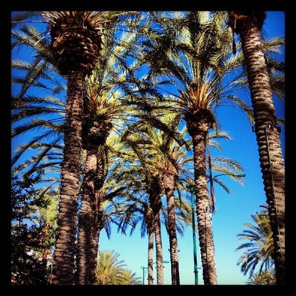 Restaurants In Garden Walk Anaheim: The Anaheim Resort