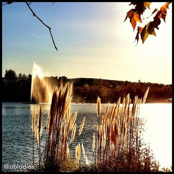 Photo taken at Lago de la Casa de Campo by Fernando P. on 11/12/2011