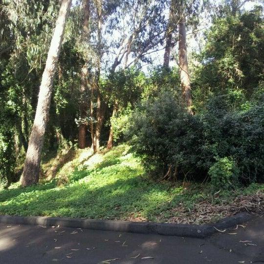 Photo taken at Sigmund Stern Grove by Rex C. on 10/26/2011