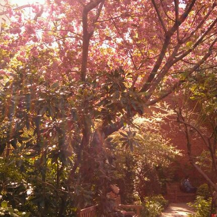 Photo taken at The Garden at St. Luke in the Fields by Ryan A. on 4/12/2012