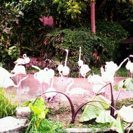 Photo taken at สวนสัตว์เปิดเขาเขียว (Khao Kheow Open Zoo) by Phatchara-pha B. on 6/7/2012