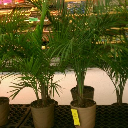 Photo taken at Walmart Supercenter by Byron B. on 3/21/2012