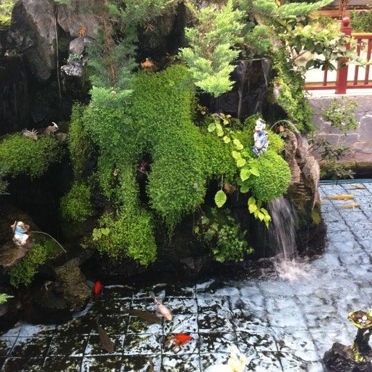 Cafe Jardin Lunch Menu: Chinese Restaurant In La Florida