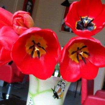 Photo taken at Frizetava.com - skaistuma studija, solārijs un kafejnīca by Frizetava.com s. on 5/7/2012