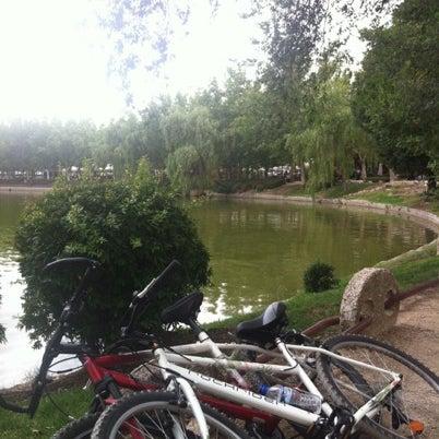 Photo taken at Lago de la Casa de Campo by Chío C. on 8/19/2012