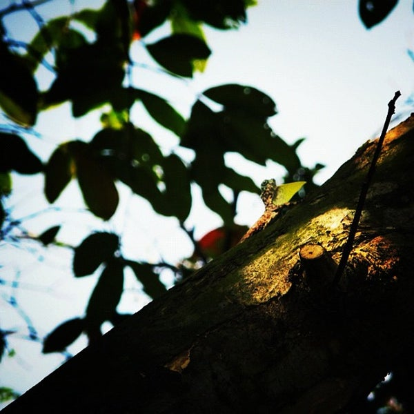 Photo taken at HortPark by Leon T. on 3/25/2012