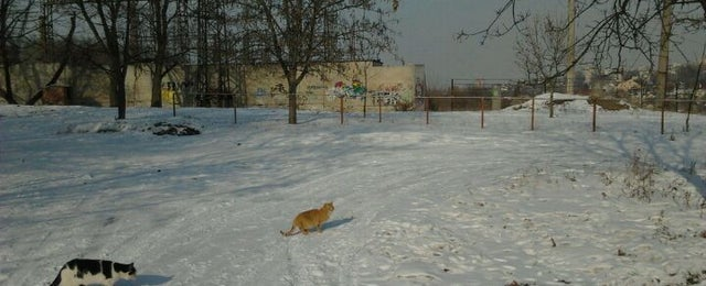 Photo taken at Стадион ДНУ by Татьяна Б. on 2/20/2012