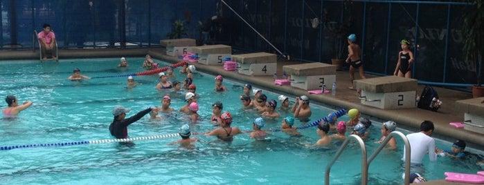 สระว่ายน้ำ 25 เมตร ศูนย์กีฬาแห่งจุฬาลงกรณ์มหาวิทยาลัย is one of Chulalongkorn University.