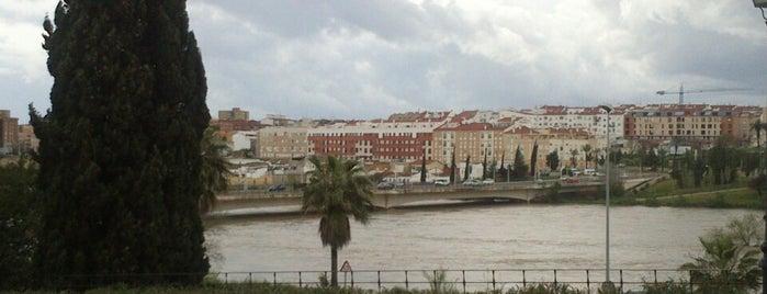 Puente De La Autonomía is one of Guide to Badajoz's best spots.