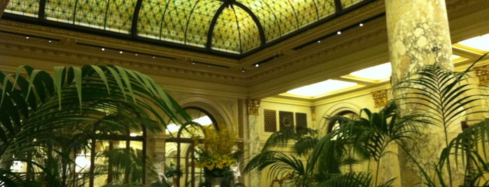 The Palm Court at The Plaza is one of test.