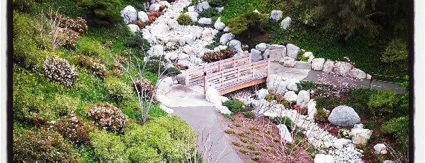 Japanese Friendship Garden is one of Things to do in San Diego.