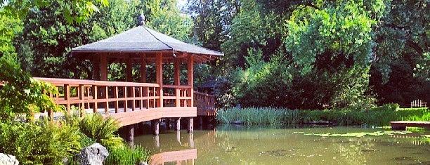 Ogród Japoński | Japanese Garden is one of 새소식.