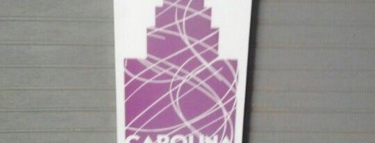 Carolina Ice Palace is one of my charleston places.