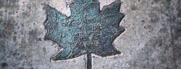 Old Ottawa South is one of Ottawa.