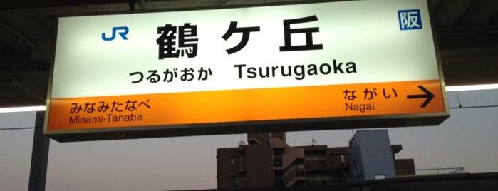 鶴ヶ丘駅 (Tsurugaoka Sta.) is one of 阪和線.