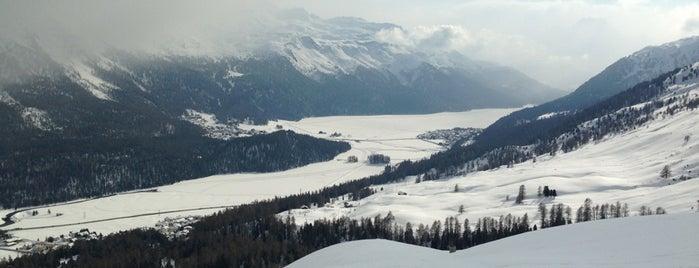 El Paradiso is one of Ritzy Glitzy St. Moritz.