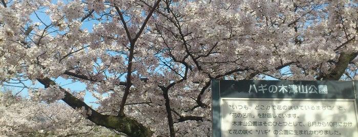 木津山公園 is one of 公園.