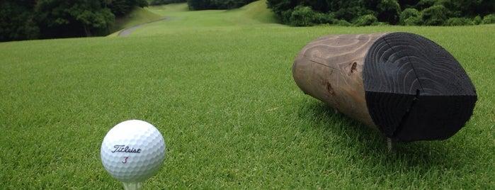 太平洋クラブ 成田コース is one of Top picks for Golf Courses.
