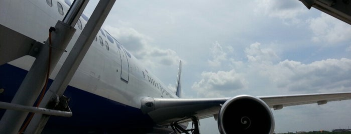 Bay 506 is one of TH-Airport-BKK-3.