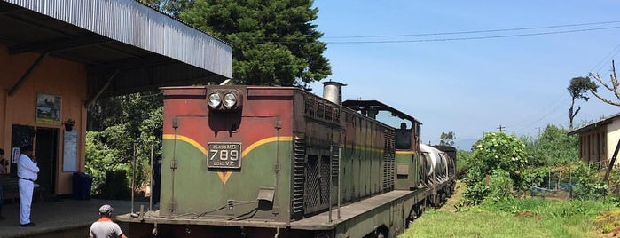 Pattipola Railway Station is one of Railway Stations In Sri Lanka.