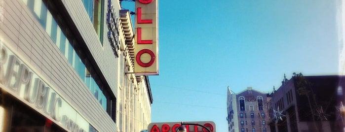 Apollo is one of Mexican Resto Venue.