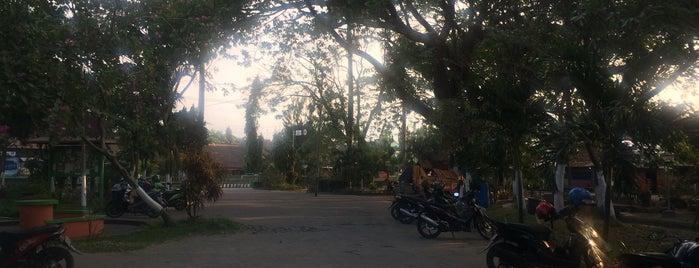 Taman Sekartaji is one of Best places in Kediri, Indonesia.