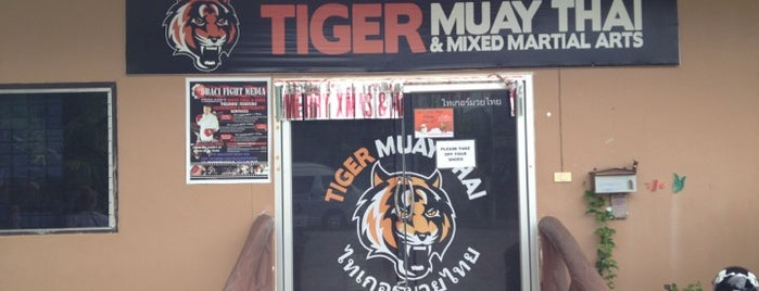 Tiger Muay Thai & MMA Training Center is one of Thailand TOP places.