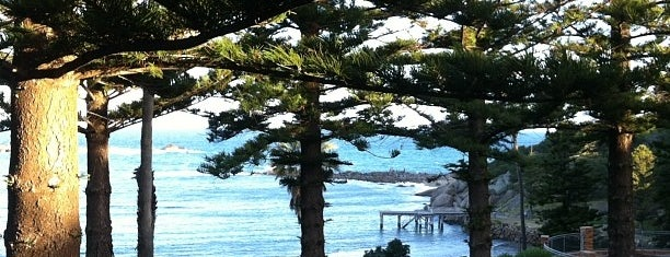 Best places in Adelaide, Australia