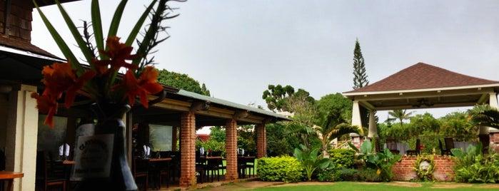 Gaylord's At Kilohana Plantation is one of Kauai Favorites.