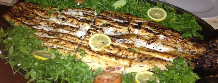 Samad Al Iraqi Restaurant is one of Dubai Food.