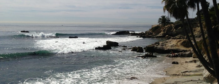 North Laguna Beach is one of My favorite places!.