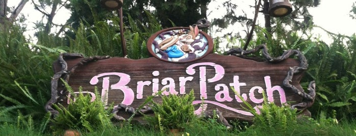 Briar Patch is one of Disneyland Shops.